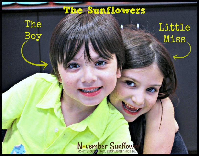 The Sunflowers on November Sunflower