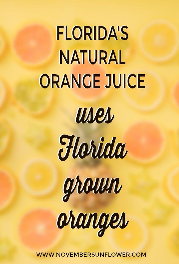 florida grown oranges used in Florida's Natural OJ