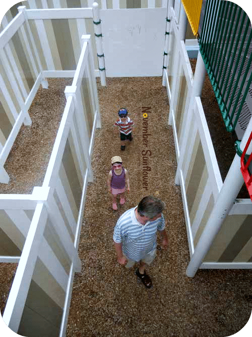 Hitting the maze at The Dinosaur Place