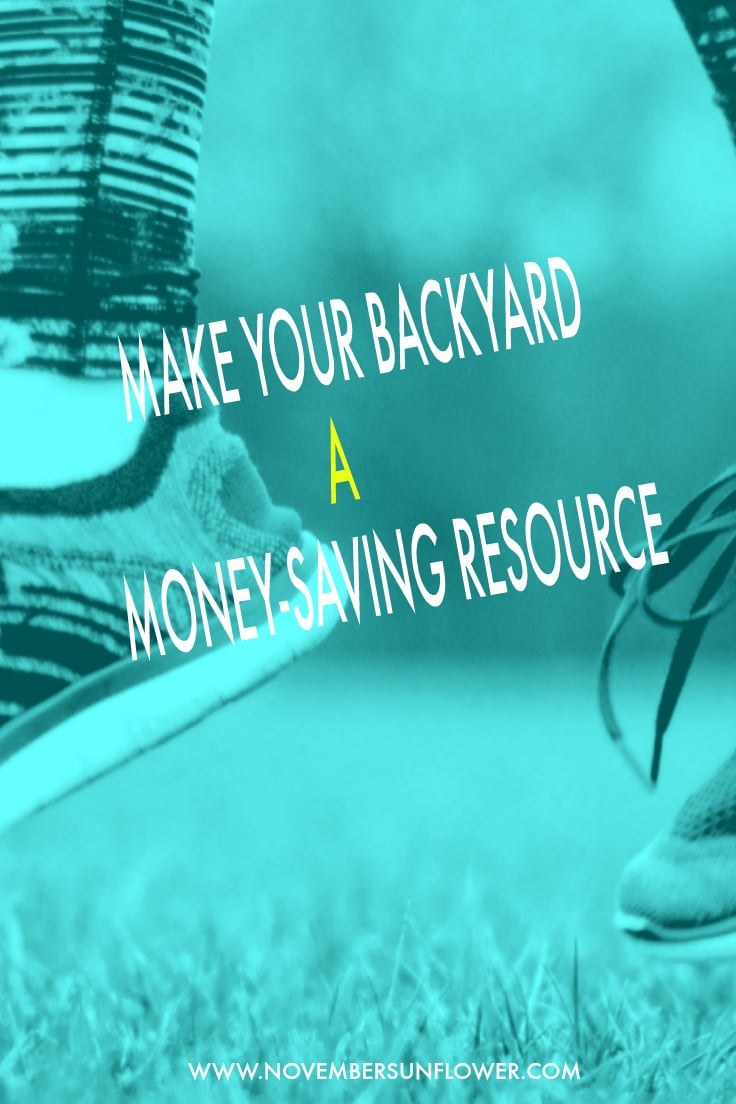Make your backyard a money-saving resource