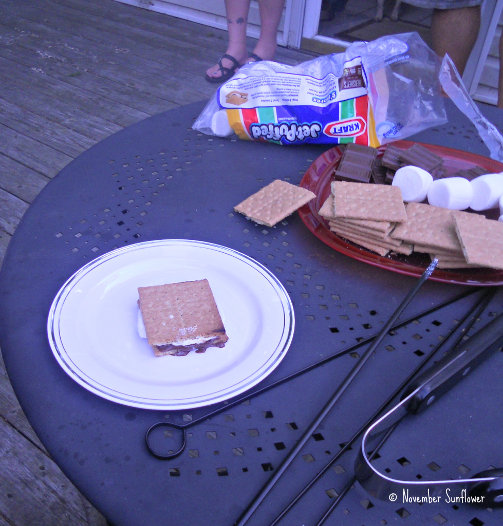 The Finished S'More
