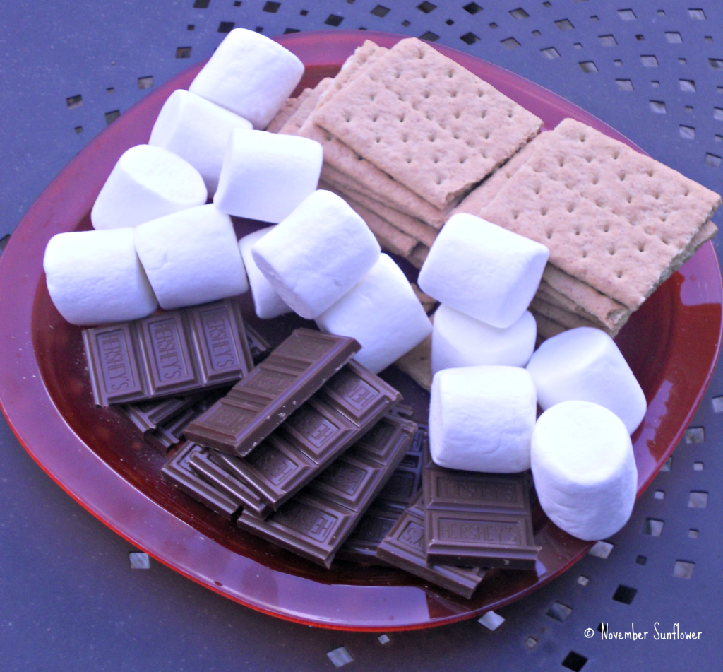 Hershey's Camp Bondfire S'Mores