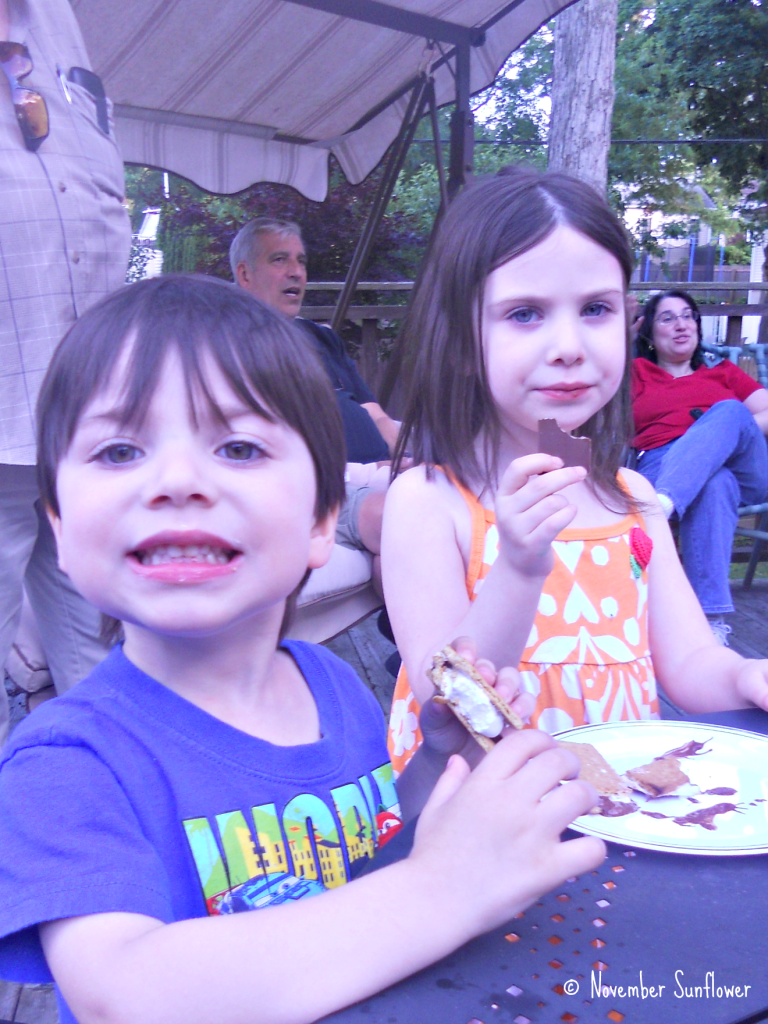 S'mores are a big hit.
