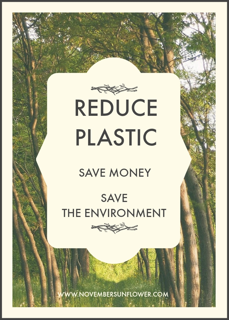 Reduce Plastic to save money & the environment
