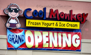 Cool Monkey Grand Opening
