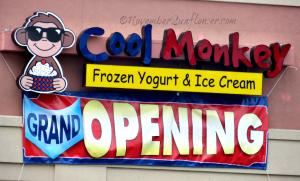 Cool Monkey Grand Opening