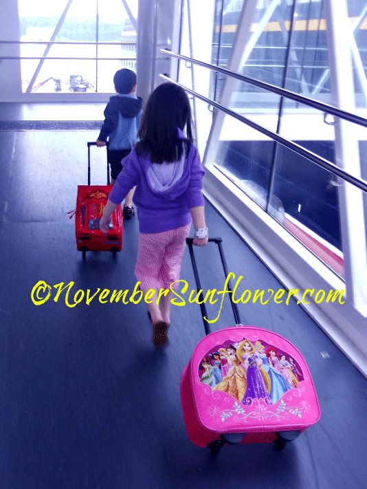 NovemberSunflowers Boarding Disney Cruise