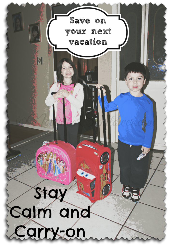 Save money using a carry-on for your flight #carryonluggage #14daysincarryon #travelsavings