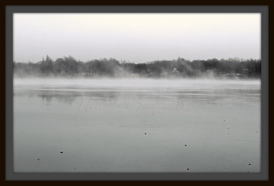 #fogonlake #landscape
