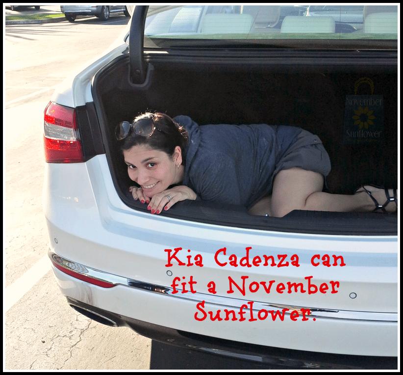Kia Cadenza fits a blogger in its trunk