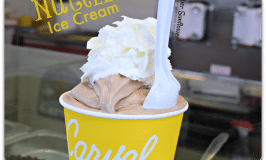 summer has a new flavor #carvel #nutella #nationalicecreamday