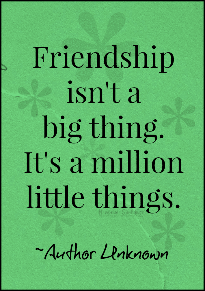 friendship is a million little things #friendship