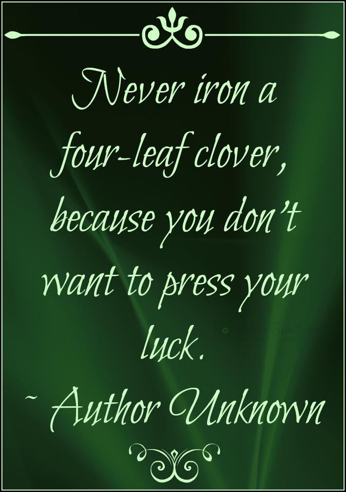 Never press a four-leaf clover #fourleafclover #4leafclover #stpattysday2015 #irisheyes