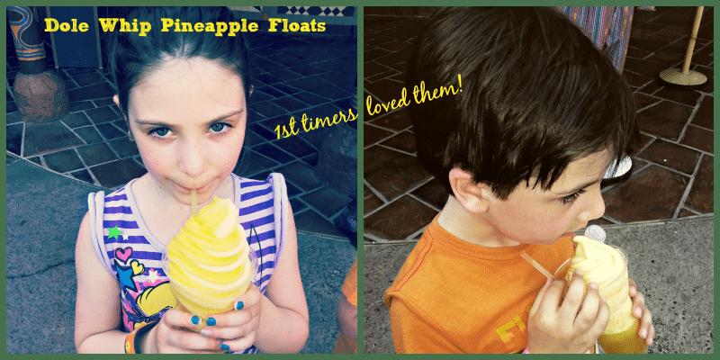 Dole Whip Pineapple Floats Aloha Isle