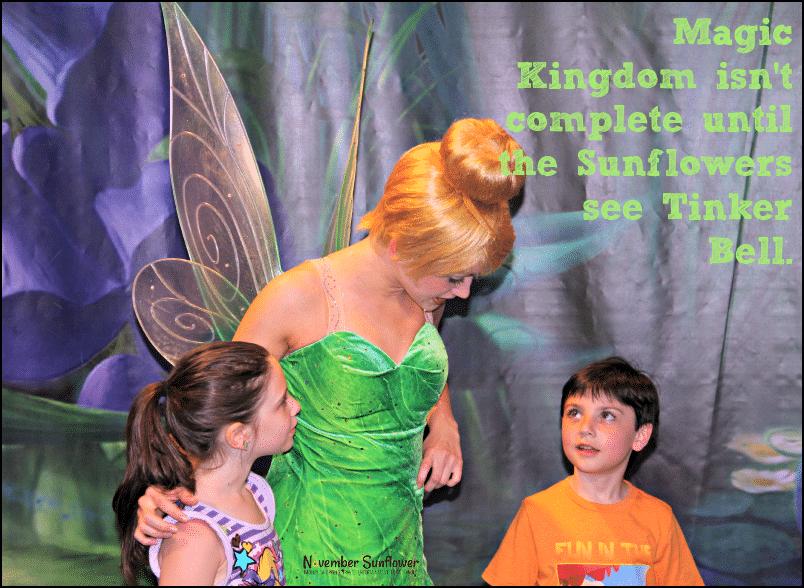 Disney's Magic Kingdom Tinker Bell