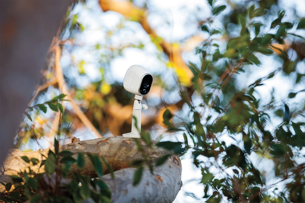 Netgear Arlo Camera in tree