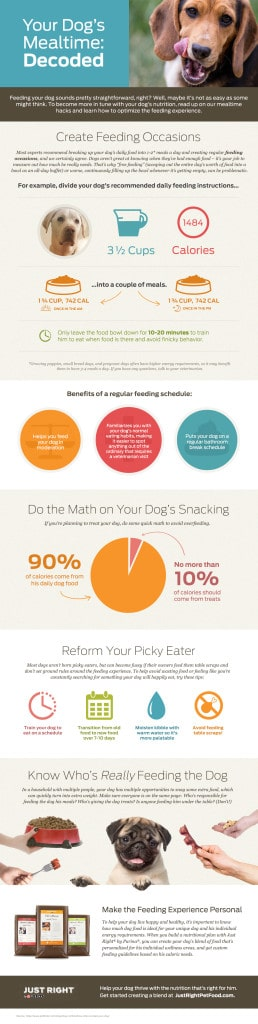 Just Right by Purina Mealtime Infographic