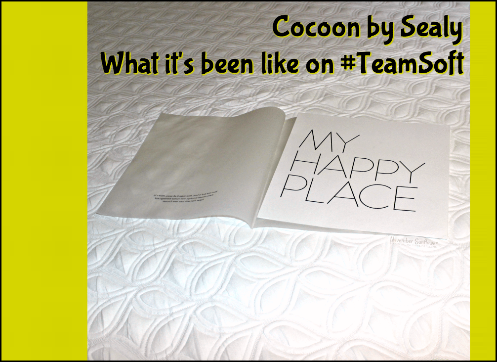 Cocoon by Sealy What it's been like on TeamSoft