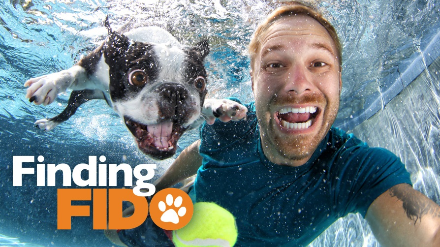Pairing people with pooches on Z Living's newest show Finding Fido