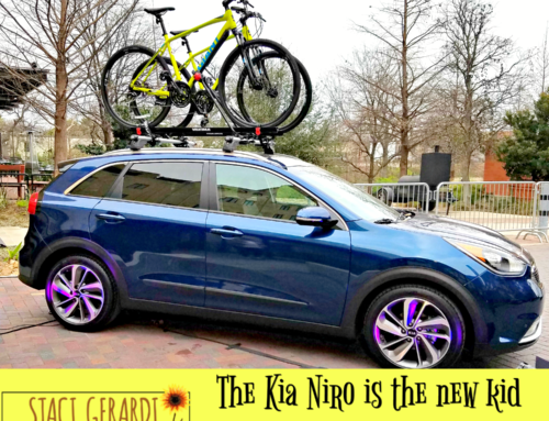 The Kia Niro is the new kid on the block