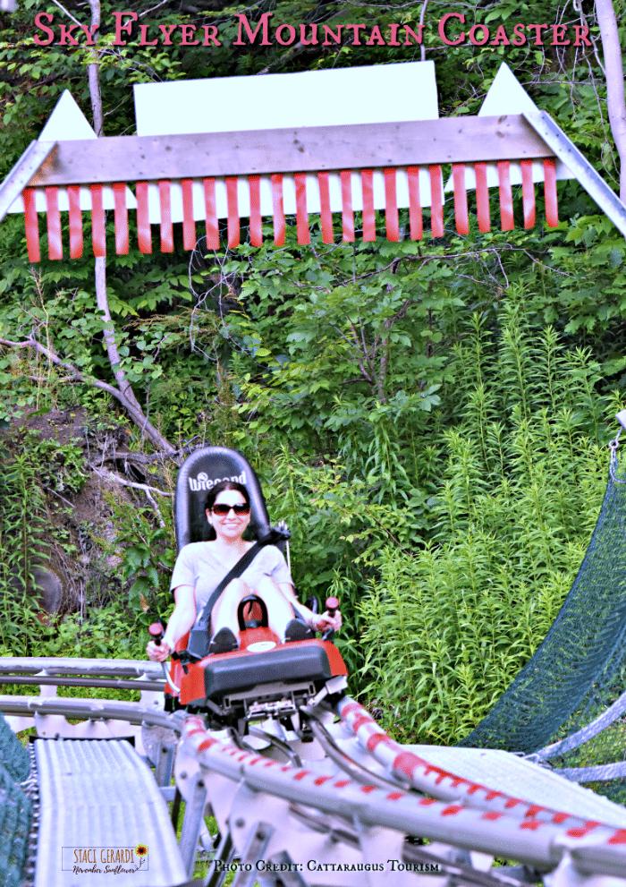 Sky Flyer Mountain Coaster