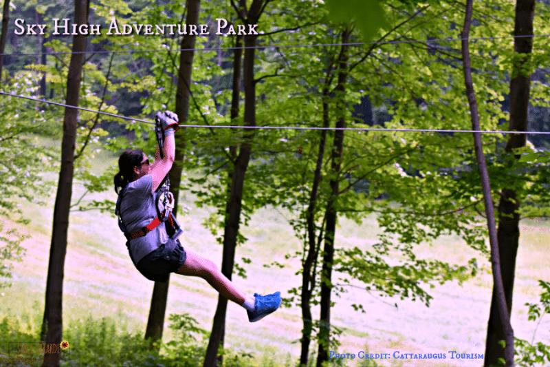 Sky High Adventure Park Zip Lining