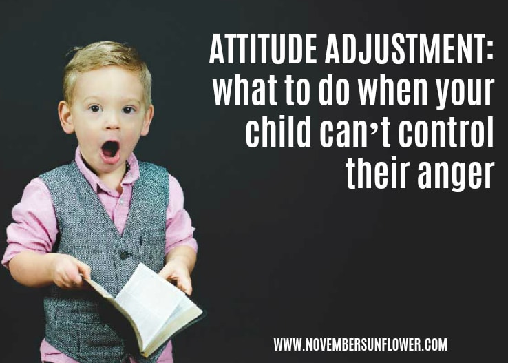attitude adjustment: what to do when your child can't control their anger