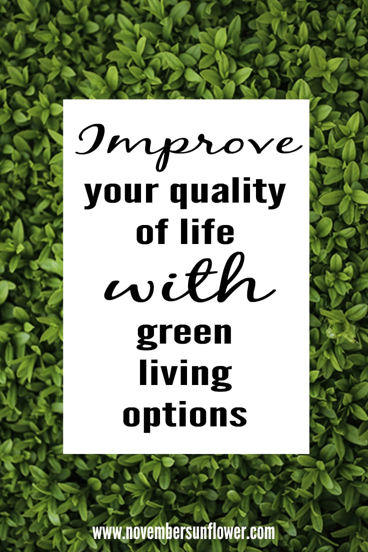 Improve your quality of life with green living options
