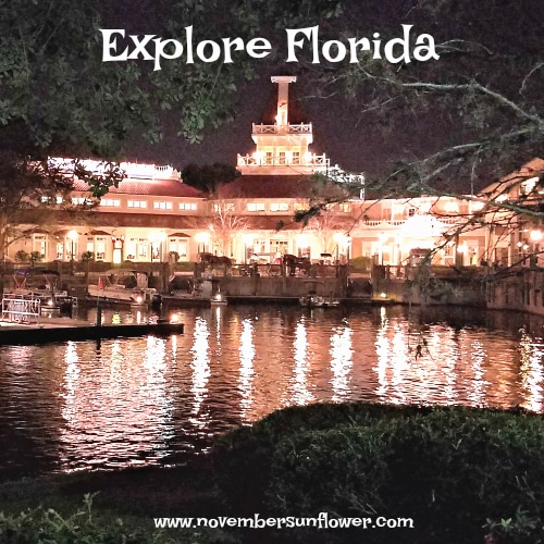 Explore the beauty of Florida with your Family