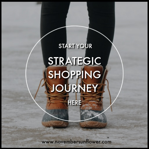 Strategic shopping online because you've got money! What do you spend it one without over-spending? Let me be your guide on this adventure!