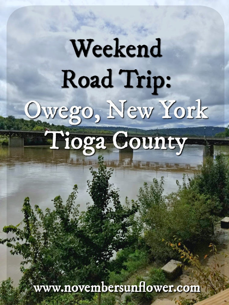 Historic Owego in Tioga County New York