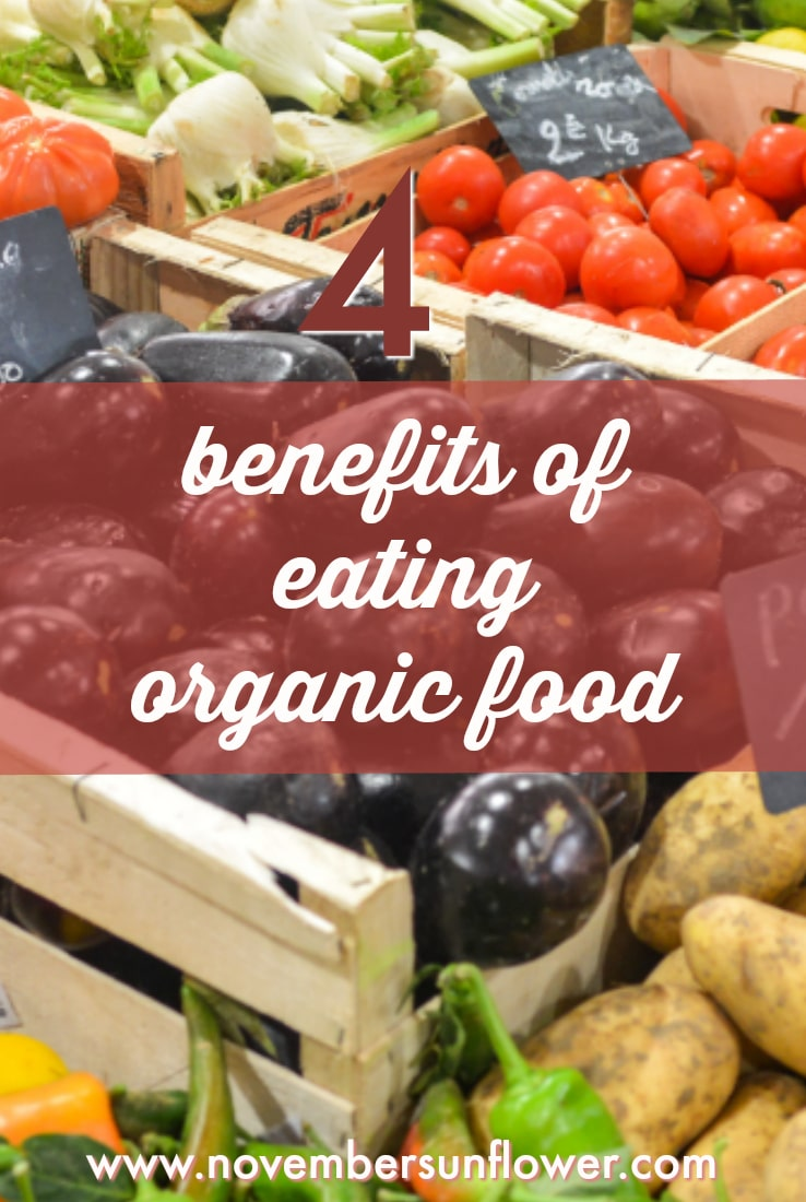 4 benefits of eating organic foods
