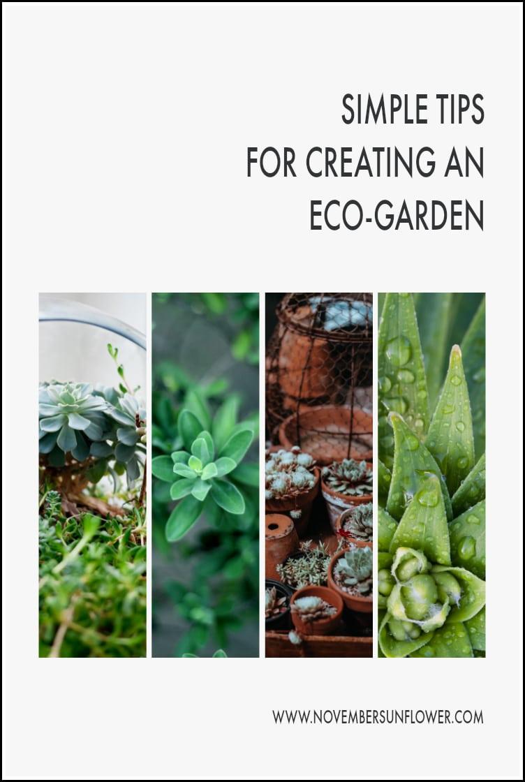 Eco-garden tips