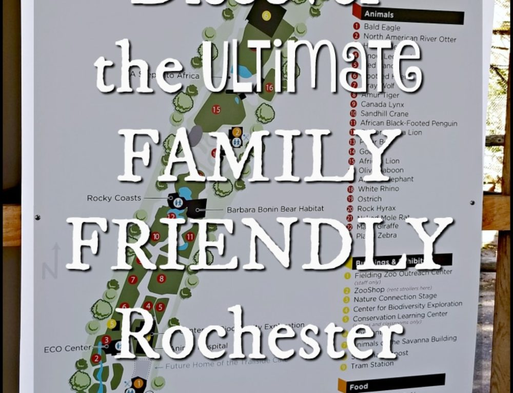 Discover the ultimate family friendly Rochester activities