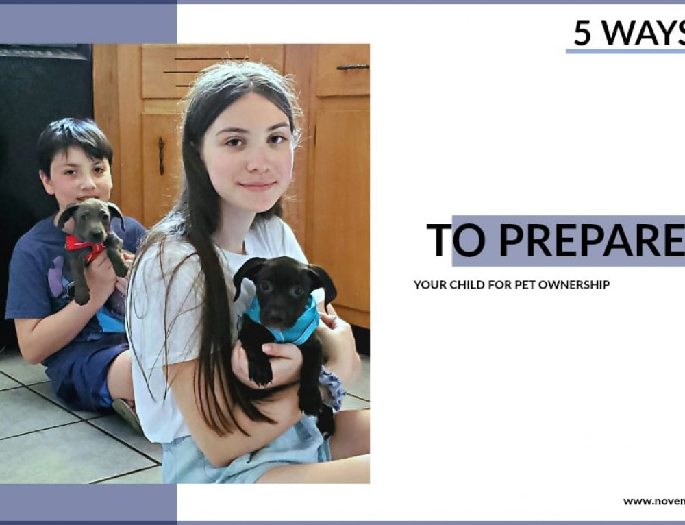 Five Ways to Prepare Your Child for Pet Ownership