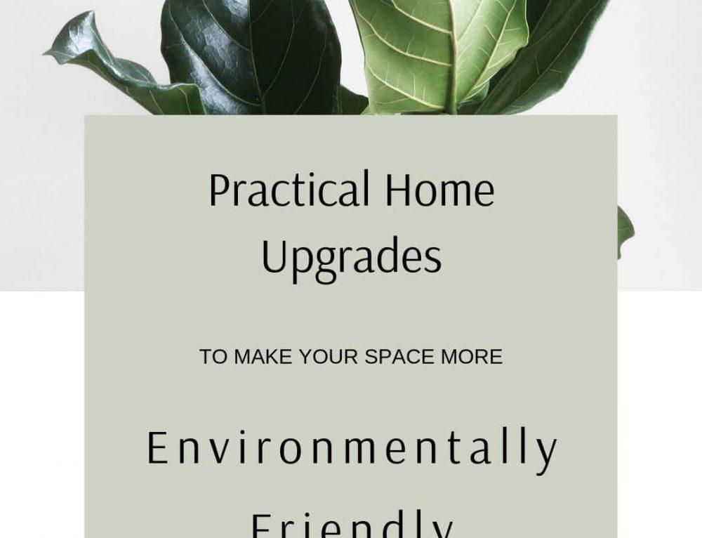 Practical Upgrades: creating more Environmentally Friendly Homes