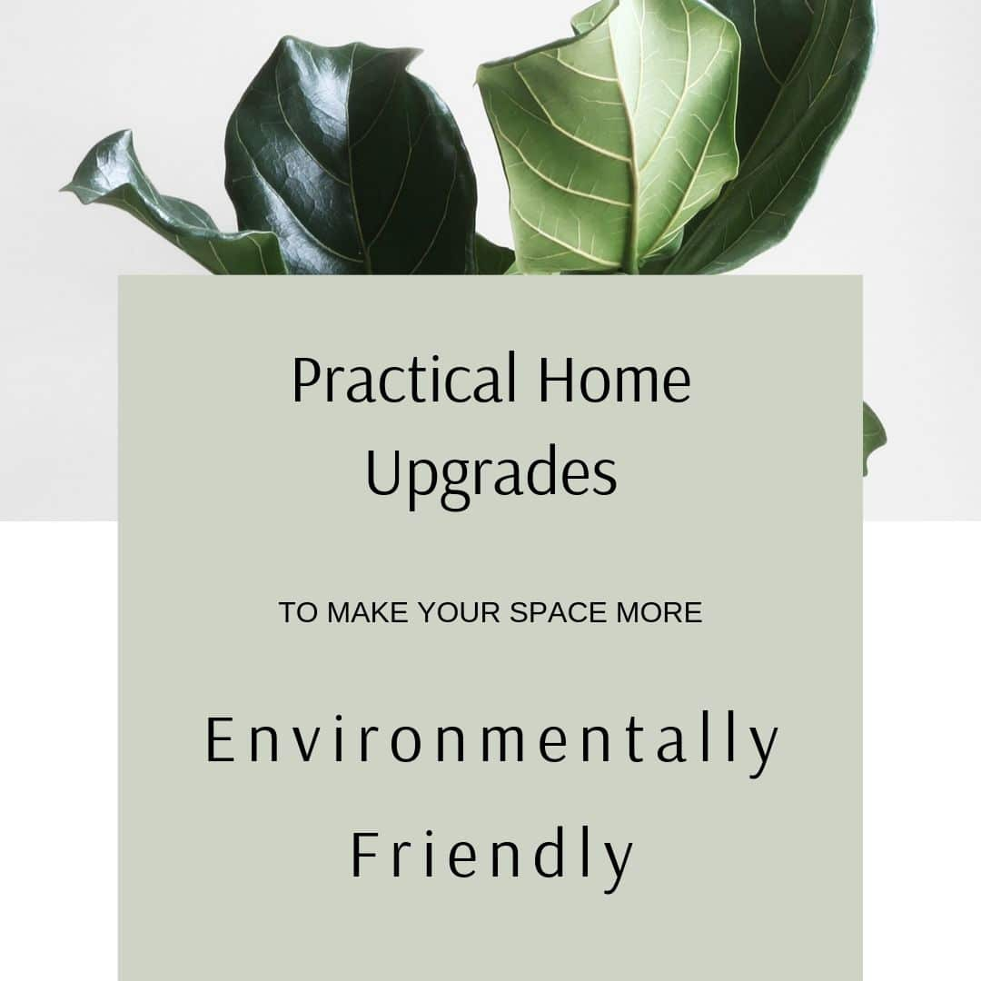 Environmentally Friendly Homes