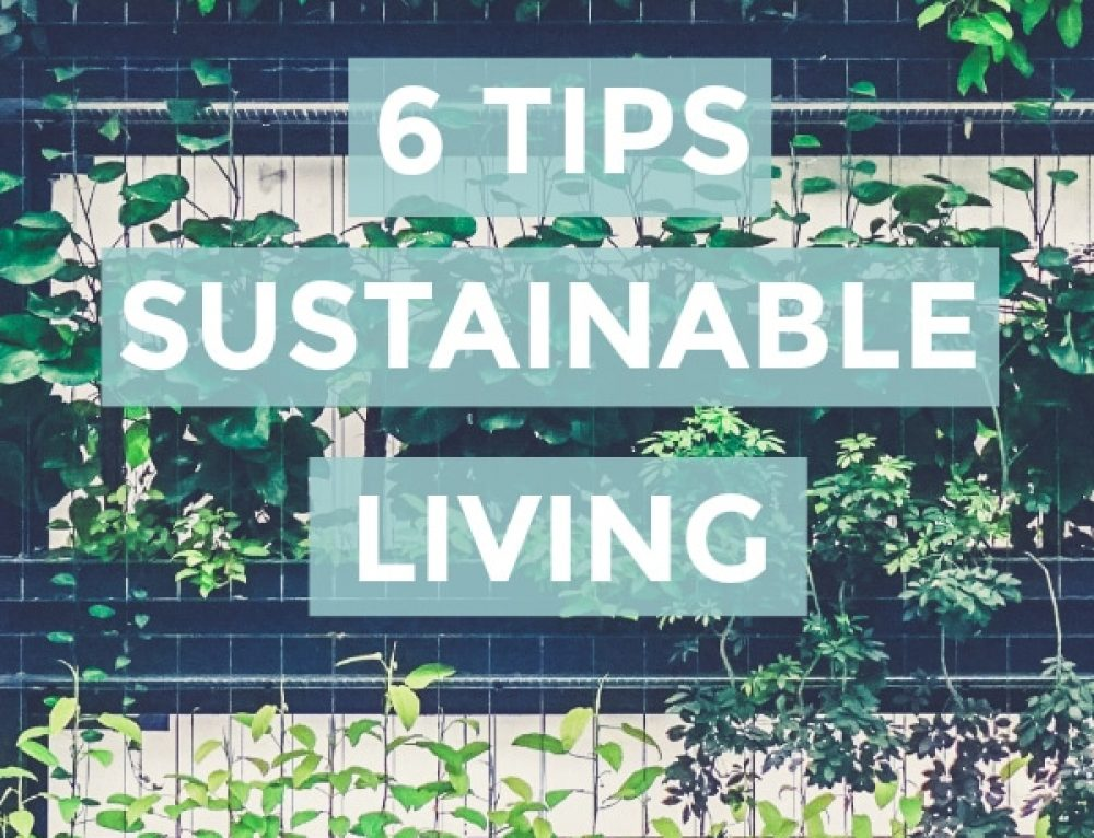 6 Tips to Help You Move to Sustainable Living