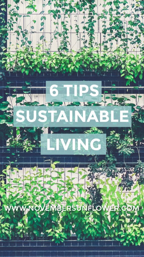 green plants sustainable living
