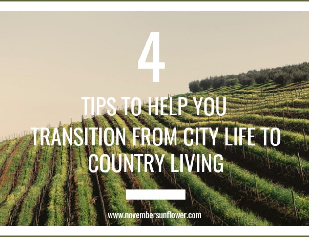 4 Tips for Transitioning From City Life to Country Living