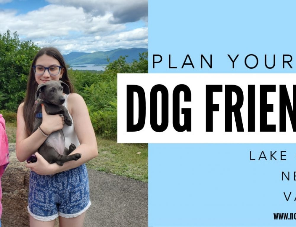 Plan Your Dog Friendly Lake George Vacation