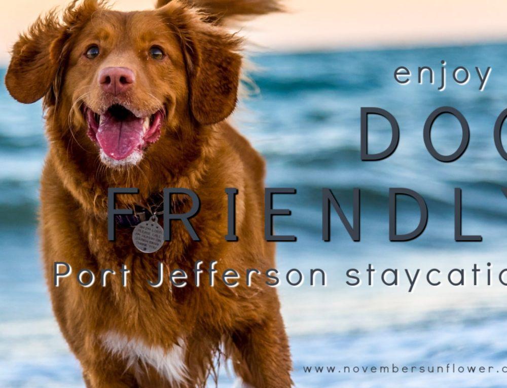 Enjoy a dog friendly Port Jefferson Staycation