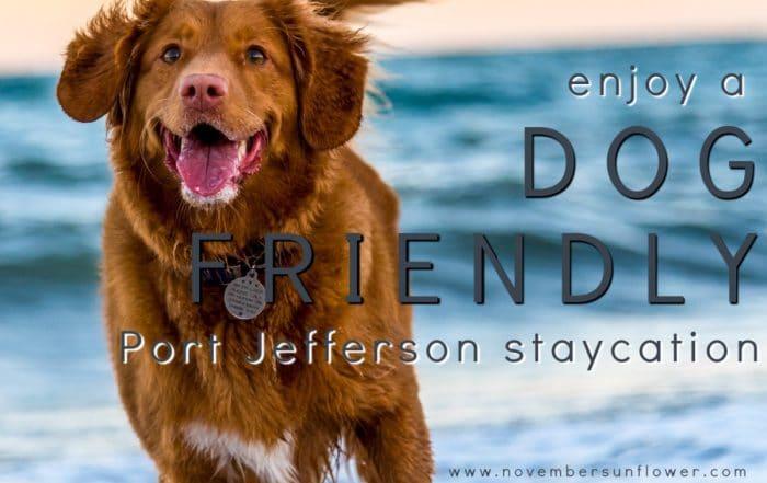 dog friendly Port Jefferson Long Island