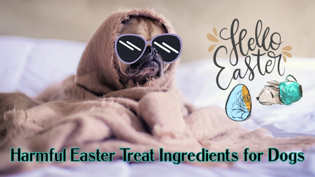 harmful easter treat ingredients for dogs