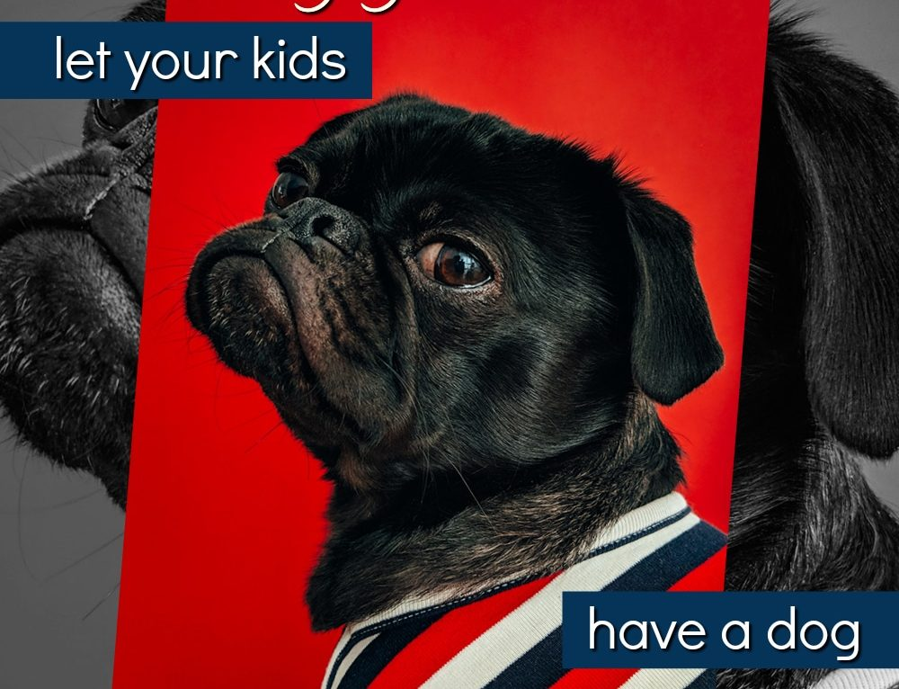 Why You Should Let Your Kids Have a Dog