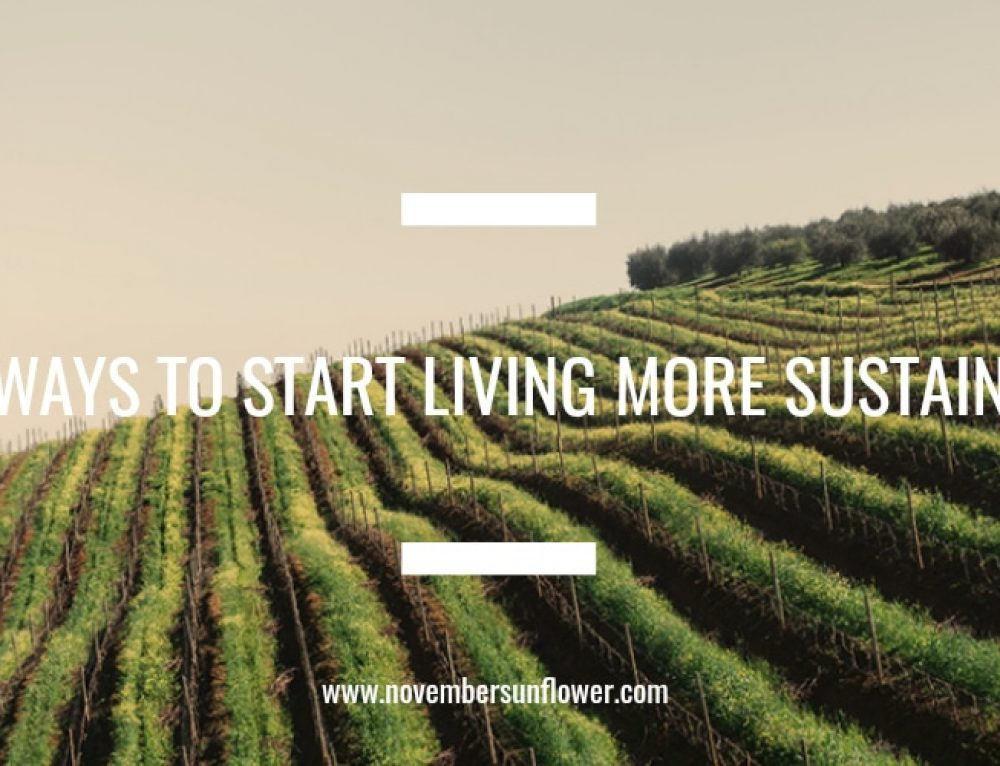 Easy Ways to Start Living More Sustainably