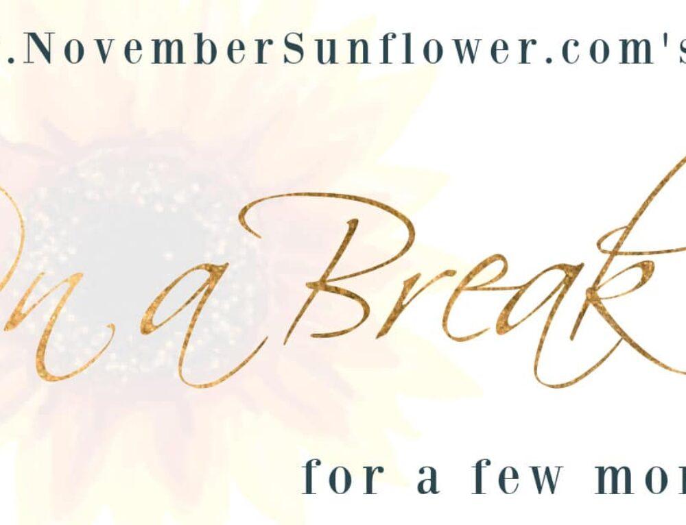 NovemberSunflower.com's Summer Hiatus