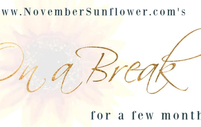novembesunflower.com taking summer hiatus