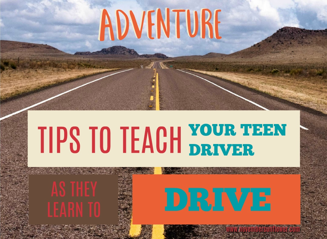roadway into the mountains - teach your teen driver